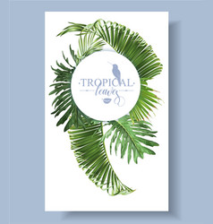 tropical leave round banner vector image