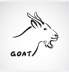 goat head on white background farm animals vector image