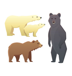 collection with different cartoon bears isolated vector image