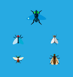 Icon flat housefly set of gnat tiny dung and vector