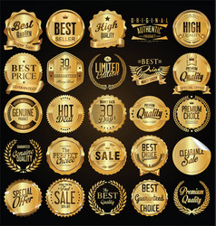 retro vintage golden badges vector image