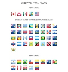 Glossy button flags - America Original colors vector image vector image