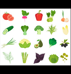 fresh vegetables and herbs color flat icons vector image vector image