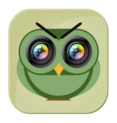 Owl camera icon photo lens vector image vector image