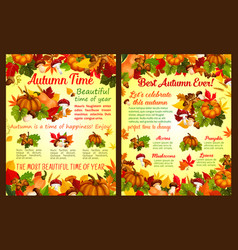 Autumn acorn leaf pumpkin fall poster vector