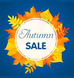 autumn sale concept background flat style vector image