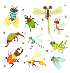 bugs butterfly and other insects in cartoon style vector image