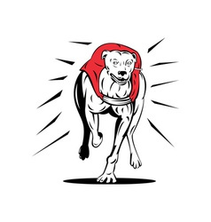 Greyhound Dog Racing Retro vector