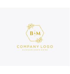 Initial bm letters decorative luxury wedding logo vector