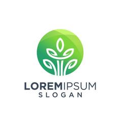 leaf tree logo design vector image