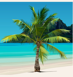 Palm growing on tropical coast with the blue water vector
