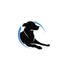 pets logo template this cat and dog logo co vector image