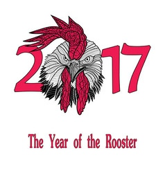 Rooster bird concept of Chinese New Year vector