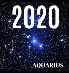 symbol aquarius zodiac sign with new year vector image