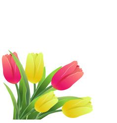 Tulips simless pattern card-01 vector