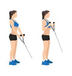 Woman doing cable hammer bicep curls exercise vector