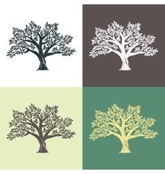 Hand drawn graphic argan trees set vector image vector image