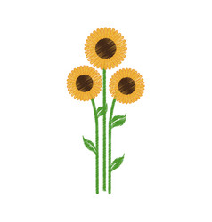 sunflowers spring natural icon vector image vector image