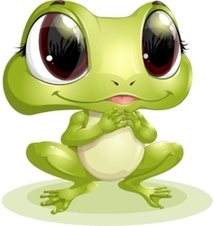 beautiful frog with big eyes vector image