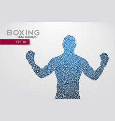 Boxing silhouette boxing vector