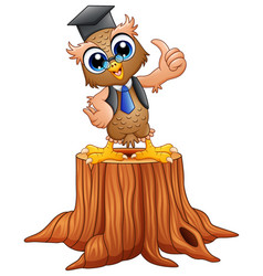 cartoon wise owl in graduat vector image