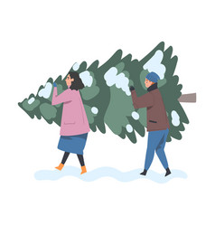 couple carrying christmas tree together people vector image