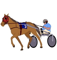 Trotter in harness vector image vector image