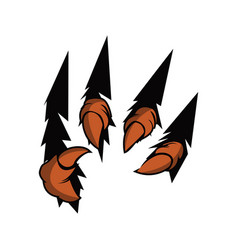 eagle claw talons vector image