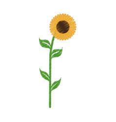 Sunflower spring natural icon vector