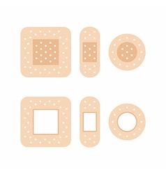 adhesive bandages vector image