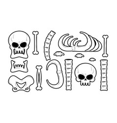bones set anatomy icons skull and spine jaw and vector image