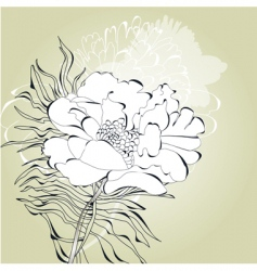 romantic card with white flower vector image vector image