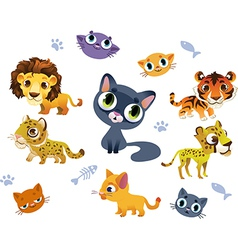 Collection of Wild Cats vector image vector image