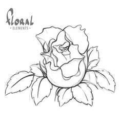 Rose painted schematically vector