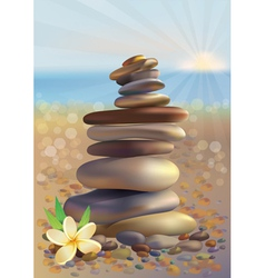 Spa stones and white flower vector image