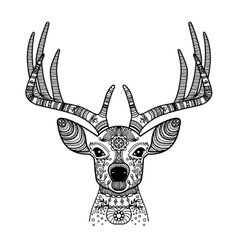 Deer head with floral ornament vector image