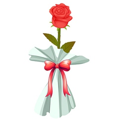 A red rose vector image