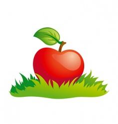 apple in grass vector image