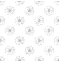 aster flower seamless on white background vector image