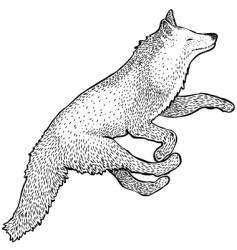 Foxy fox vector
