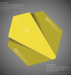 Infographic template with hexagon randomly divided vector