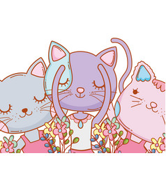 kitty cats dancing ballet cartoon vector image