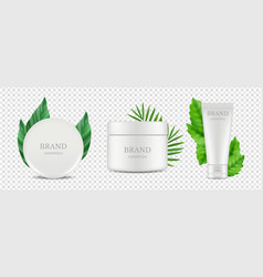 organic cosmetics tube and tube boxes with vector image