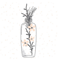 rustic glass jar with leaves hand drawn vector image