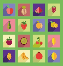 set of fruits flat icon vector image vector image
