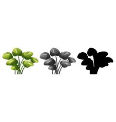 set of plant design vector image