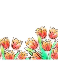 Watercolor tulips vector image