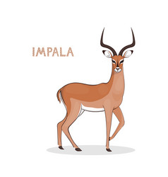 A cartoon impala with long horns isolated on a vector