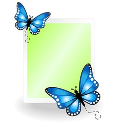 Butterfly message board vector image