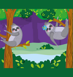Cute sloths wildlife animal vector